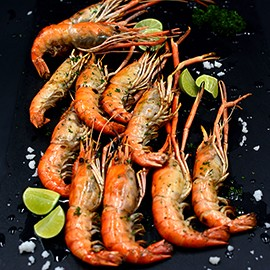 river_prawn05_may18_270x270