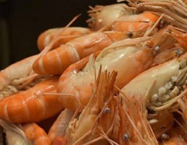 best-seafood-buffet-in-bangkok