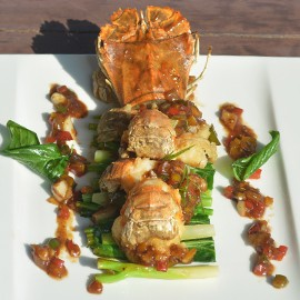 rock-lobster-seafood-lovers4-270x270