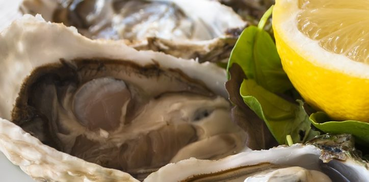 1800x450-happy-oyster