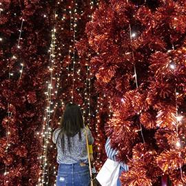 best-festive-lighting-in-bangkok-270x270-4