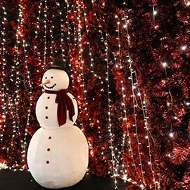 best-festive-lighting-in-bangkok-270x270-5