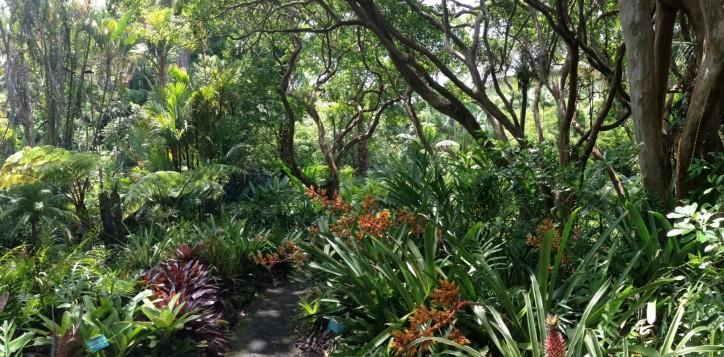 destination-phuketbotanicgarden