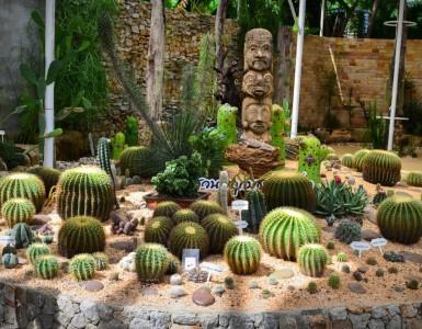 phuket-botanic-garden