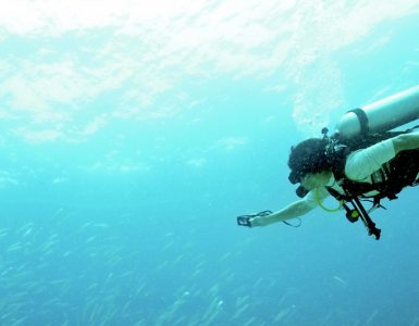 diving-courses-phuket