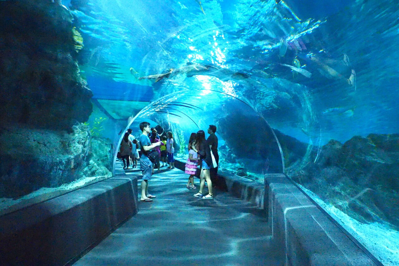 Bangkok Sealife