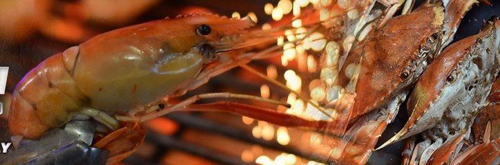 river-prawn-web-banner_1200x240