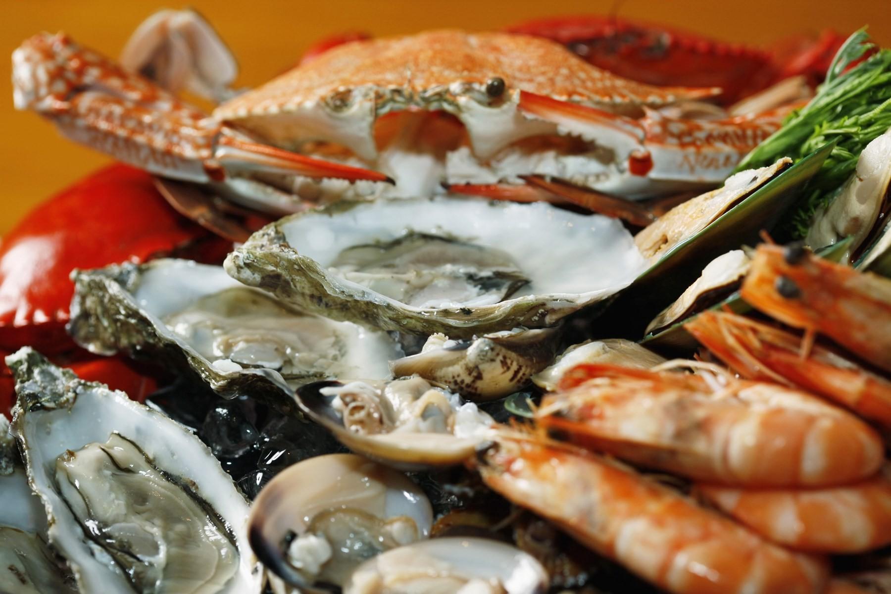 Best Seafood Restaurant In Sapporo