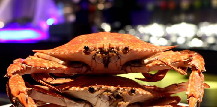 crab-buffet-promotion2