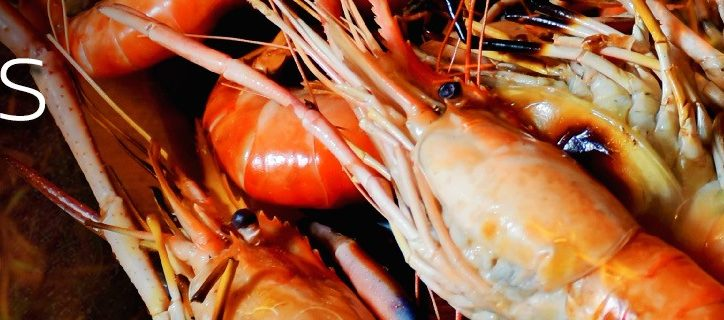 web-banner-silom-prawn-on-fire-dinner-buffet