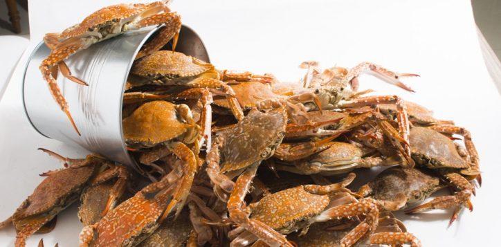 crab-n-crew008