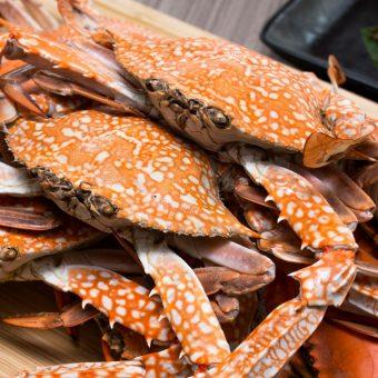 crab-n-crew-dinner-buffet