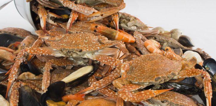 crab-n-crew010-2