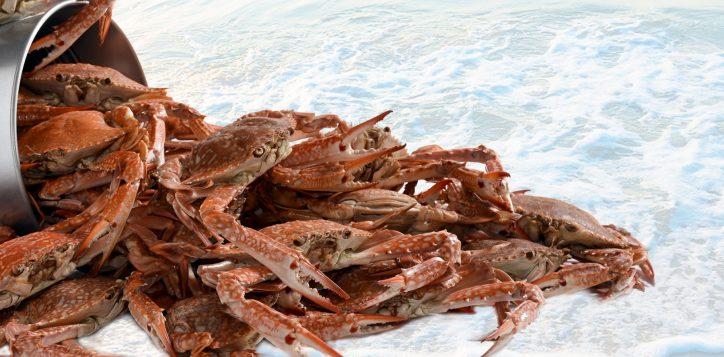 crab-dinner-buffet-novotel-bangkok-silom