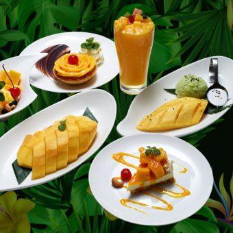 mango-delight-promotion