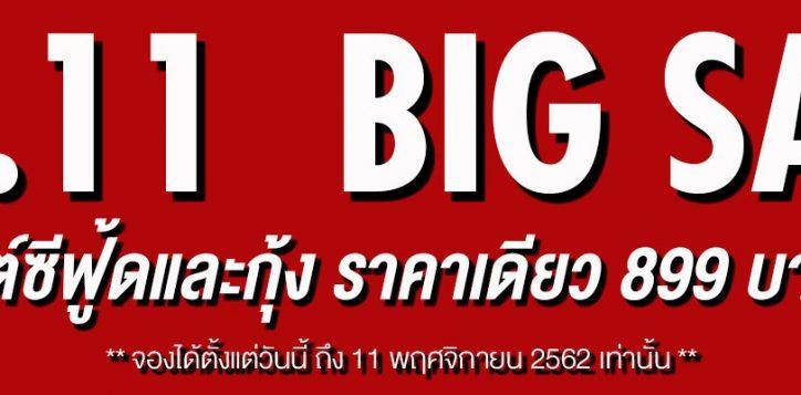 11-11-web-banner