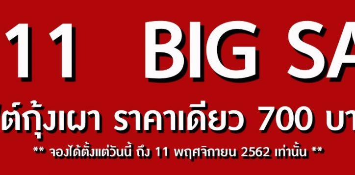 11-11-web-banner-nbsr