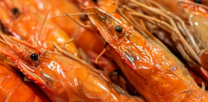 seafood-restaurant-bangkok-web-cover