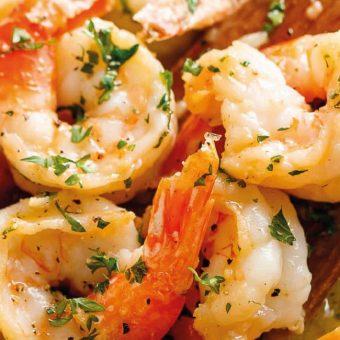 bay-shrimp-fever