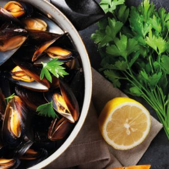 new-zealand-mussel-pot