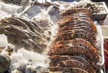 อาหารทะเลในหัวหิน