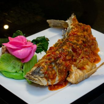 andaman-sea-bass