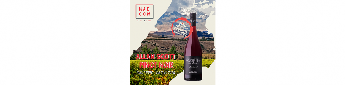 Maddie's Fav: Allan Scott Pinot Noir