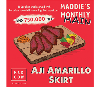 maddies-monthly-main-aji-amarillo-skirt