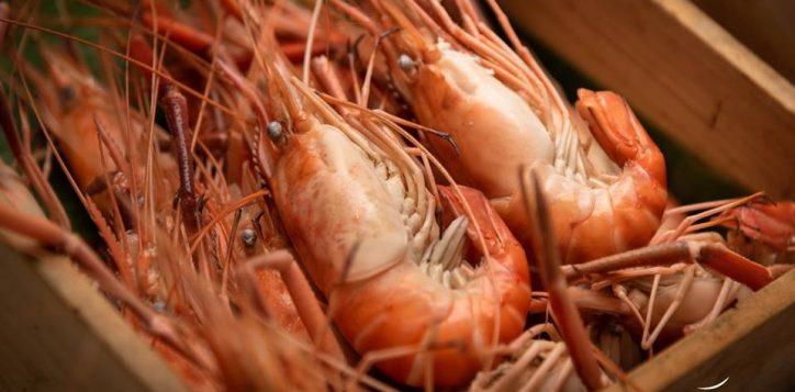 fresh-seafood3