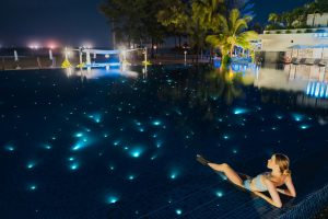 Pullman-Danang-Beach-Resort-Fiber-Star-Swimming-Pool