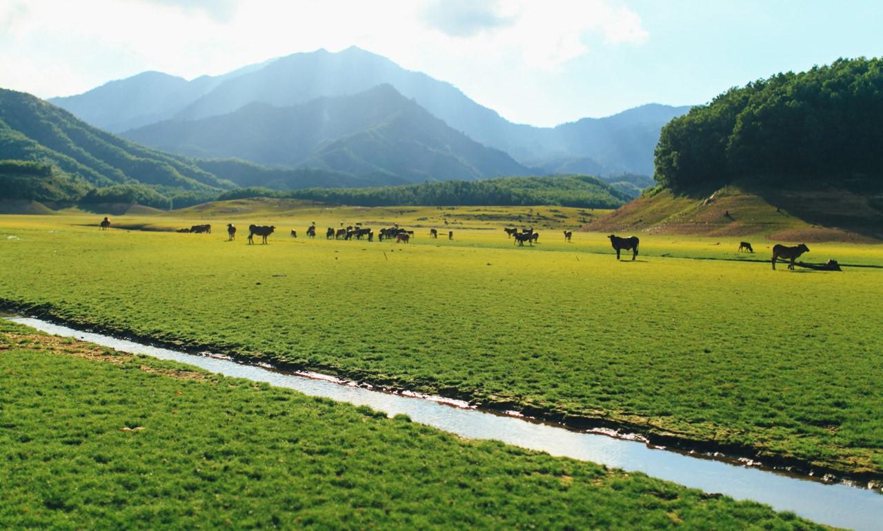 hoa-trung-lake-danang-streams-and-lake