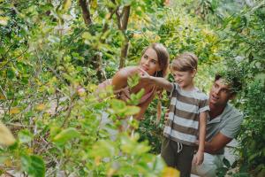 family-activities-pullmandanang