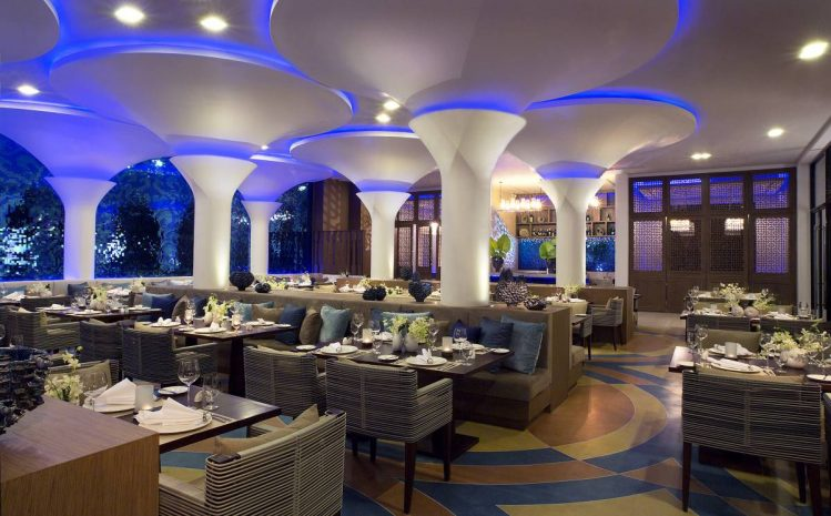 exquisite-dinner-at-vista-from-thb550