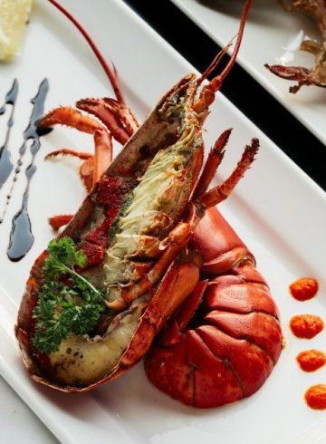 seafood-paradise-42