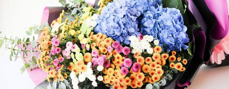 sofitel-flower-collection