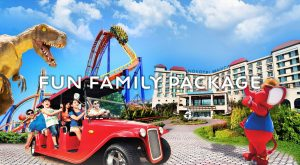 Fun Family VIP Package