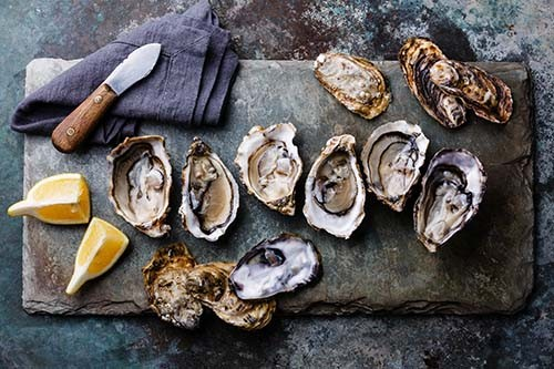 oysters500pxx500px