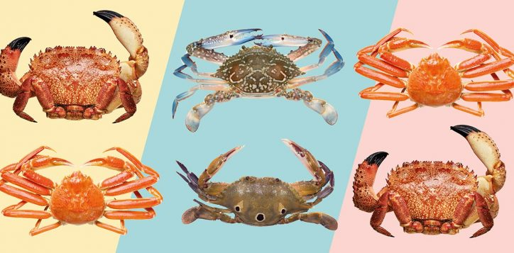 crab-dinner-buffet-online_microsite-promo-page-1408-x-640
